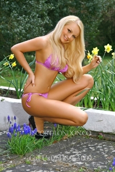 escort wembley girls